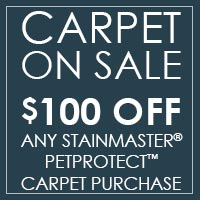 Save $100 on any Stainmaster PetProtect Carpet purchase at West Carpets in Rahway!
